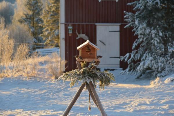 unser traditionelles Vogelhus