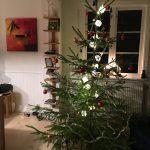Baum stand schon im November gekennzeichnet