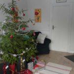 Unser diesjähriger Weihnachtsbaum mit Geschenken